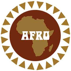 The Everland Music Store - Afrobeat